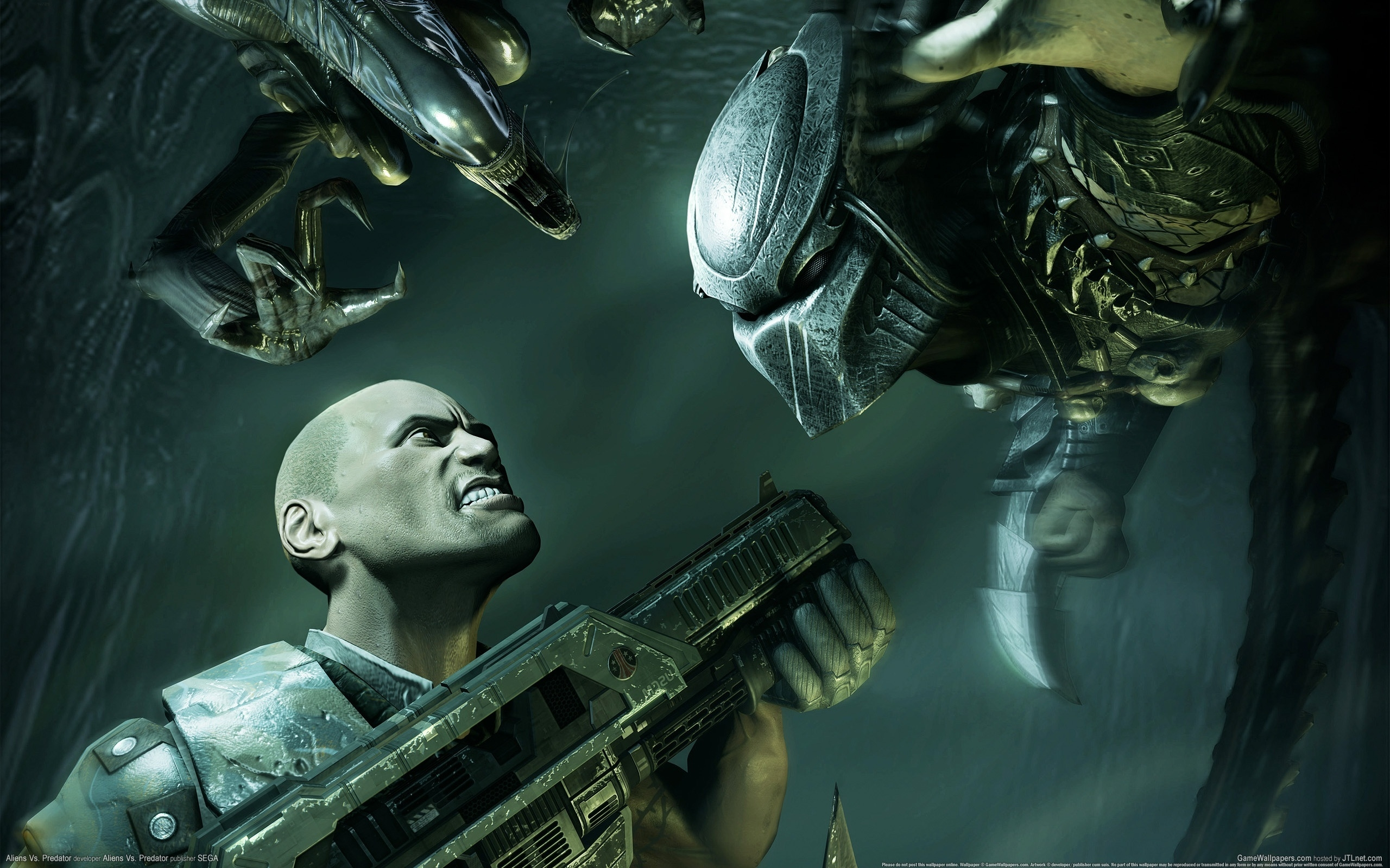Обои Aliens vs predator, фото