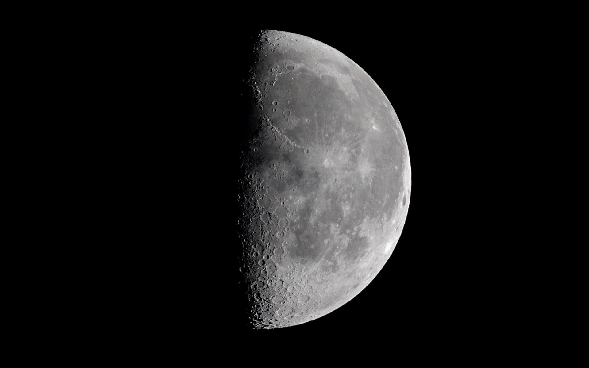 Что сажать в марте на рассаду по лунному календарю