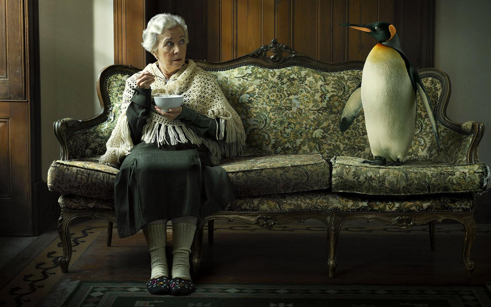 Животные » Приколы на XA-XA.ORG: Тысячи фото, картинки ...