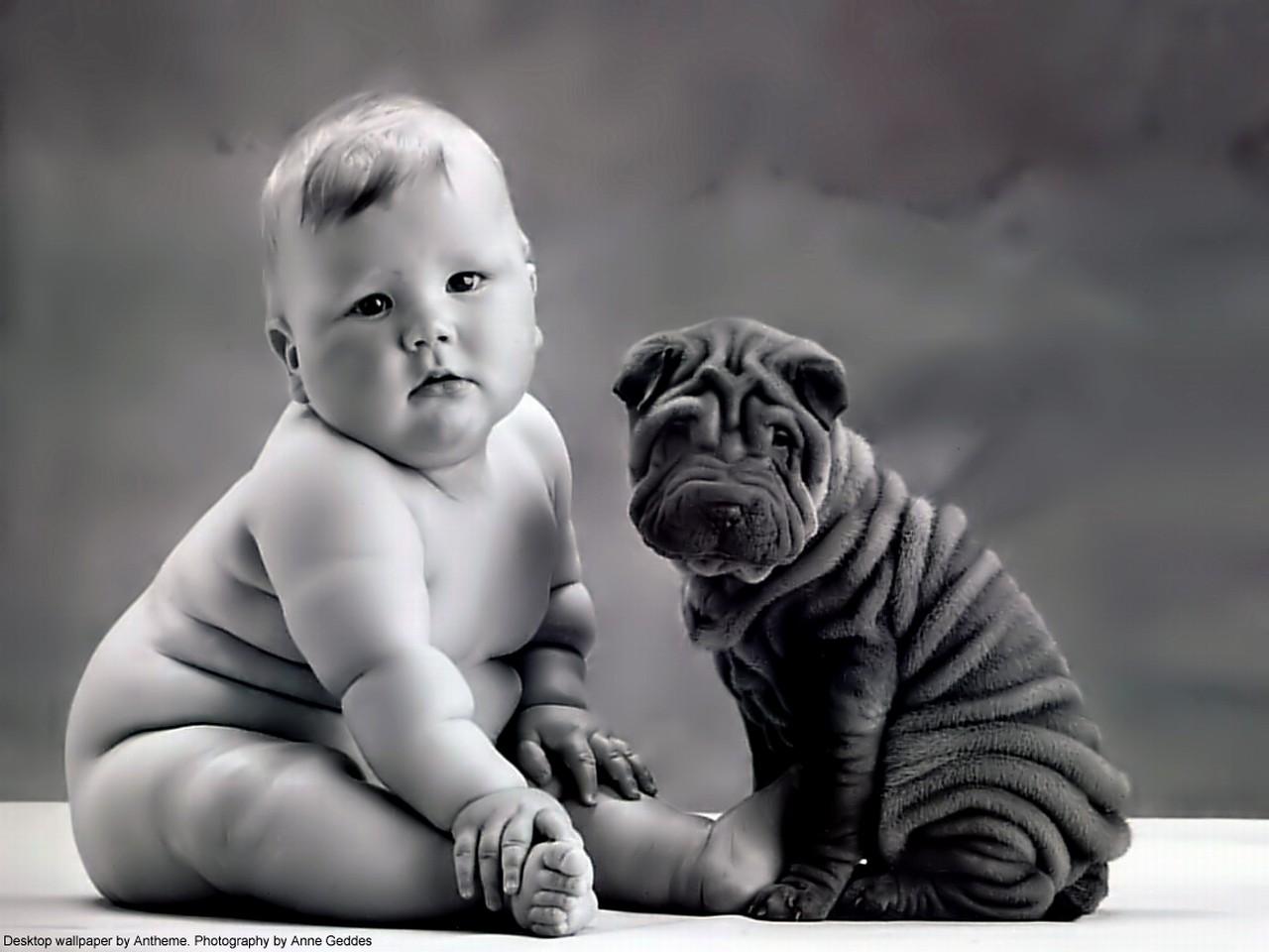 Фото толстеньких малышек 27 фотография