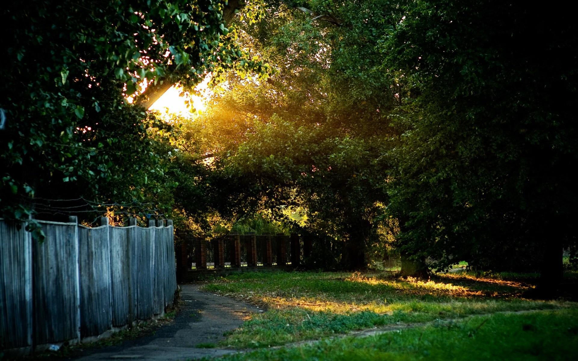 двор красивый фото