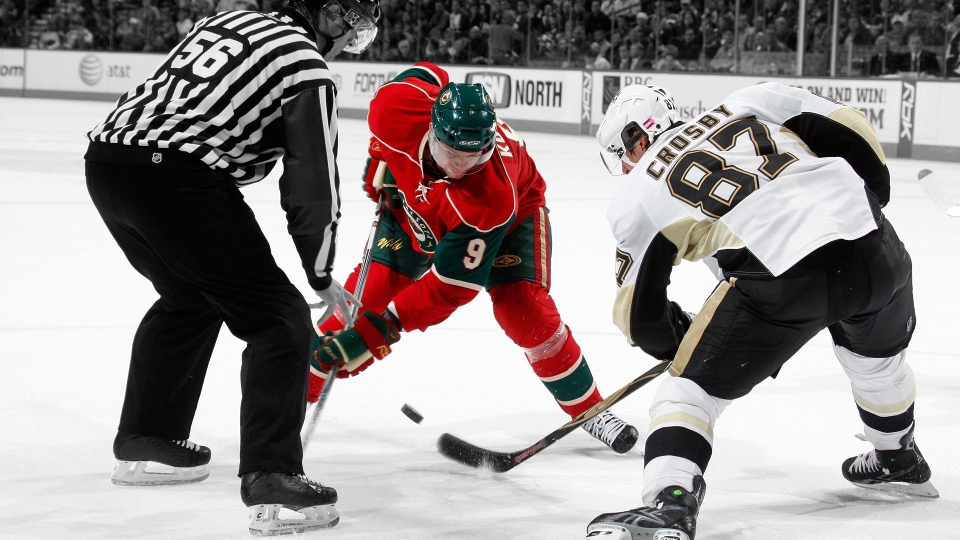 Спорт спорт хоккей