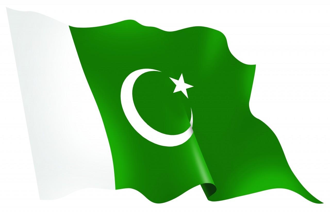 Флаги обои зеленый флаг
