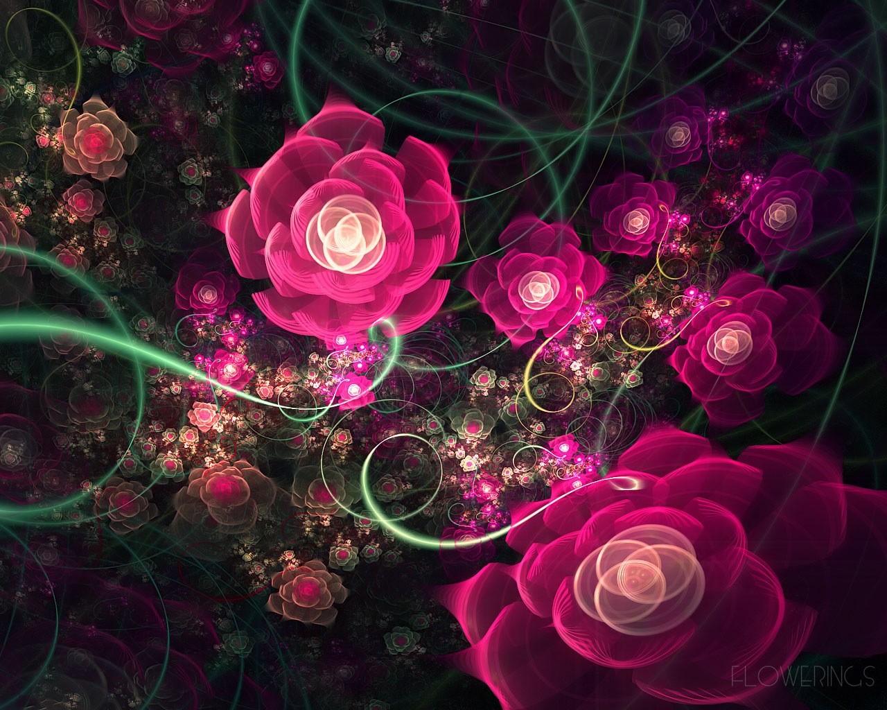 Розовые цветы красивые цветы description