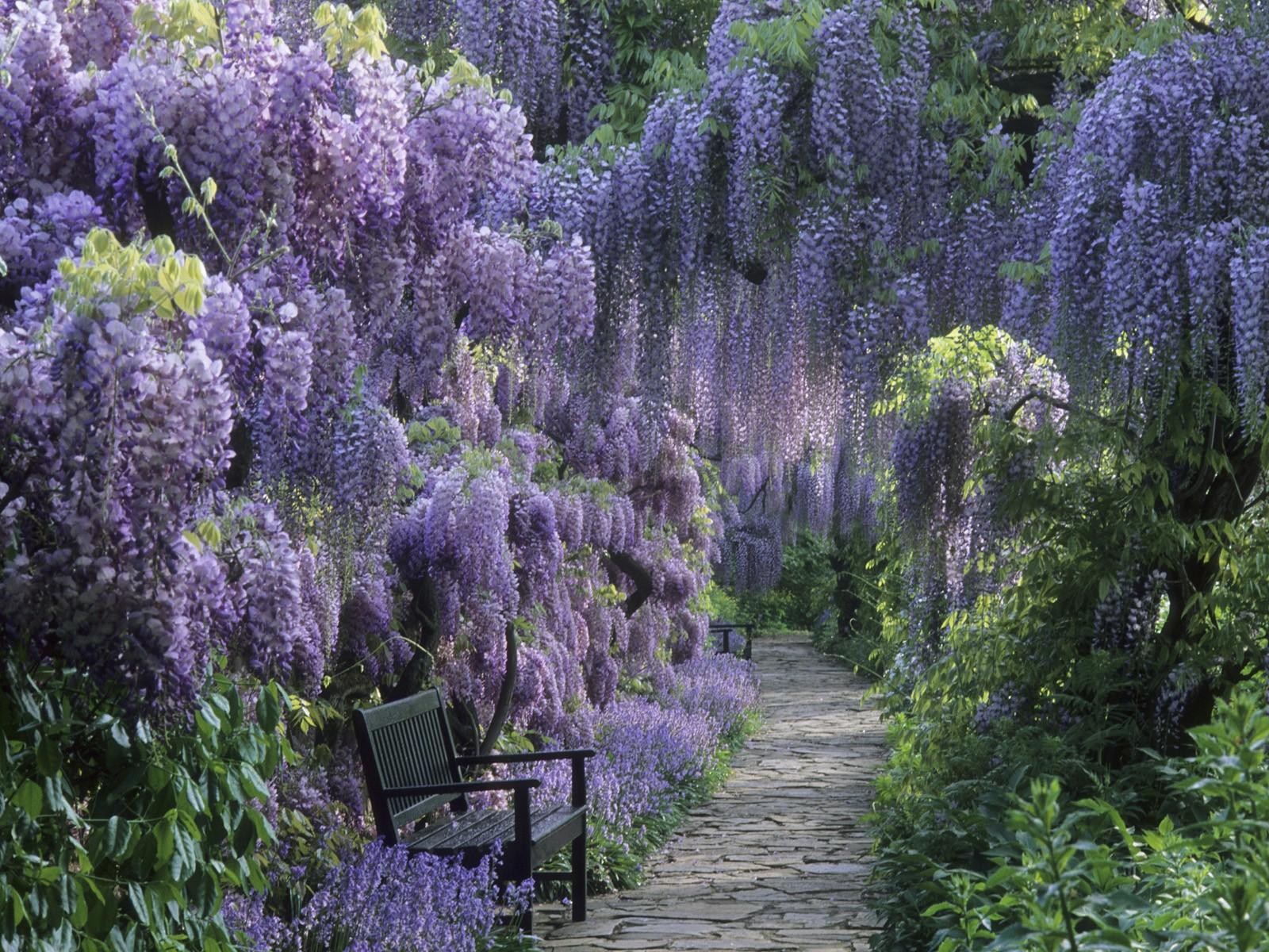 Цветы цветы из бисера
